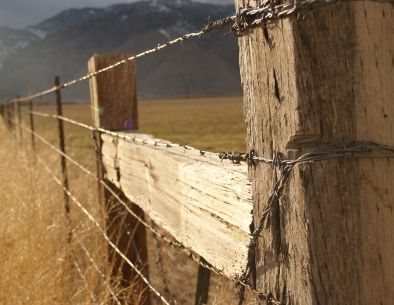 barbed wire range fence - Google Search