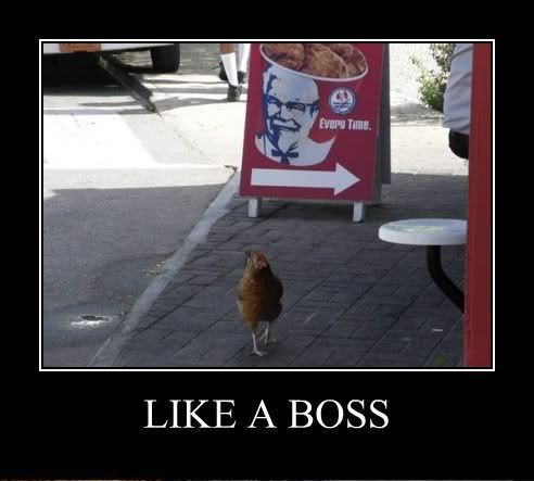like a boss photo: LIKE A BOSS DeMotivational3.jpg