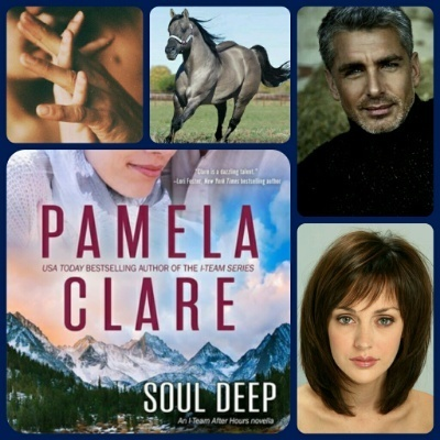 Soul Deep (I-Team, #6.5) by Pamela Clare