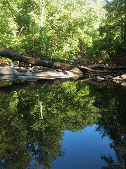 I find it easier to reflect where I can see nature doing the same