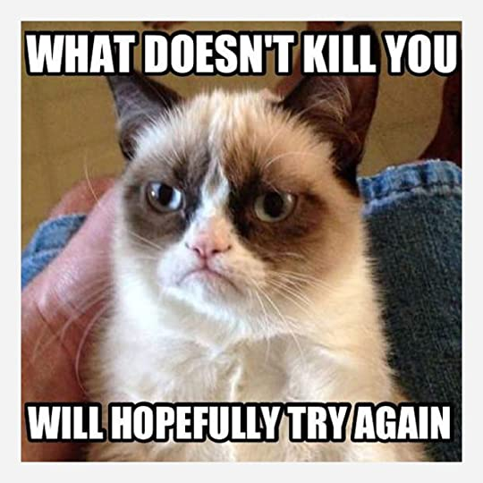 Another Grumpy Cat