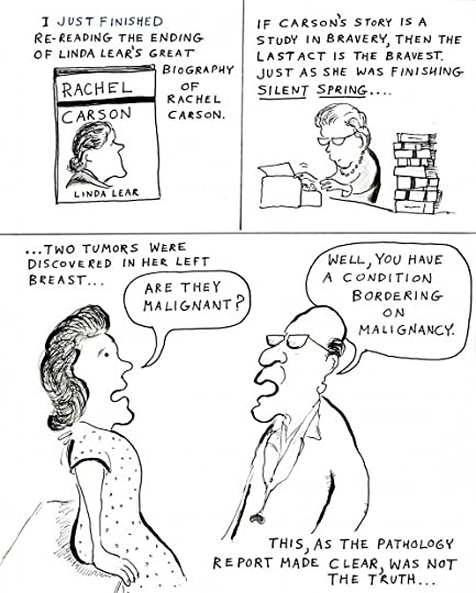 david gessner s blog rachel s war a cartoon essay on rachel  rachel2