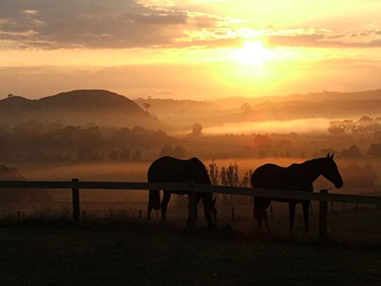 farm sunrise: