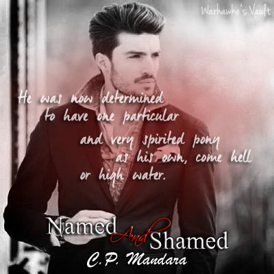 warhawke (Malaysia)'s review of Named and Shamed