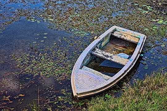 abandoned boat in water