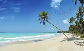 beach caribbean The Messenger: