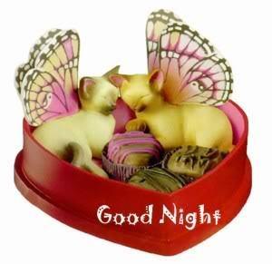 good night photo: Good Night catcandy.jpg