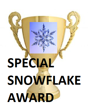 Spacial Snowflake Award
