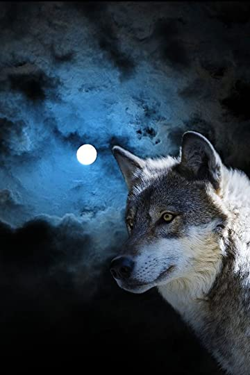 Wolf with moon in background:
