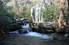 photo dismal gorge trail_zps2hbnmbbi.jpg