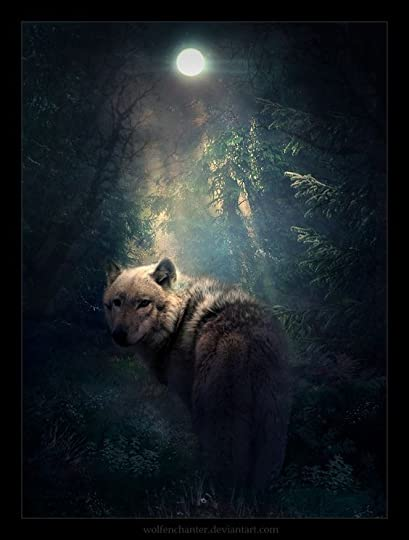 the wolf under the full moon: