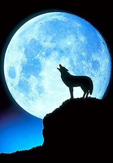 wolf and full moon: