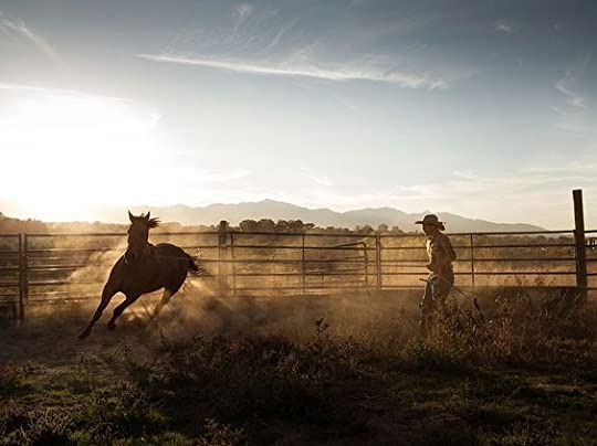 man working with horse: