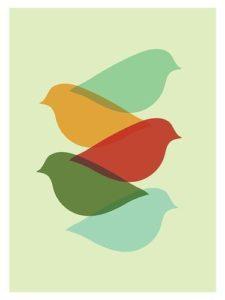 birds take time