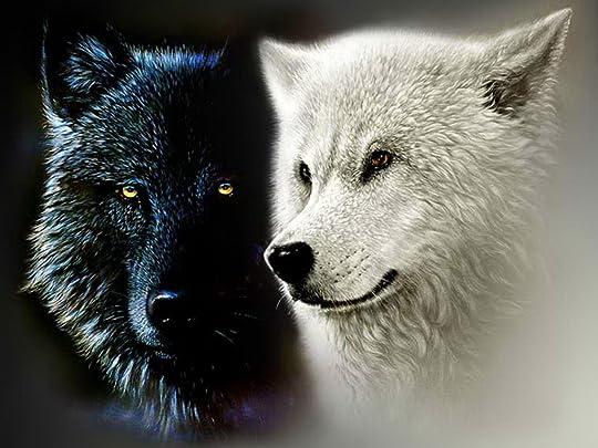 photo black-and-white-wolf_zps3kmy4rwn.jpg