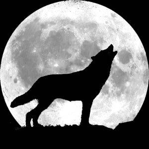 photo howlingwolf_zps8kxfwbdt.jpg