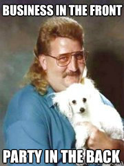 The Mullet: Hairstyle of the Gods by Barney Hoskyns
