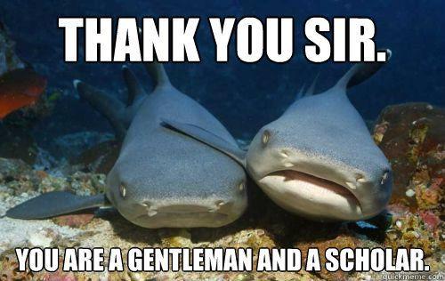 Shark Brains