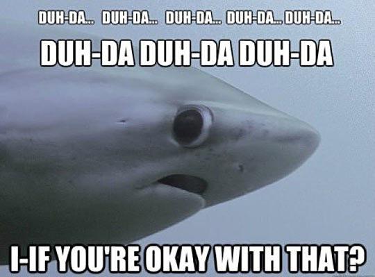 photo funny-scared-face-shark-eyes1_zpsapeoorzp.jpg