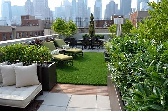 rooftop garden: