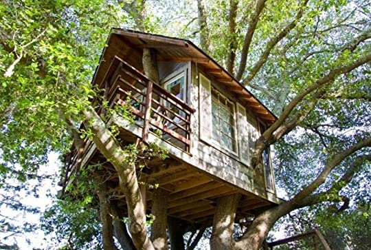 photo Up In the Treehouse 7.jpg