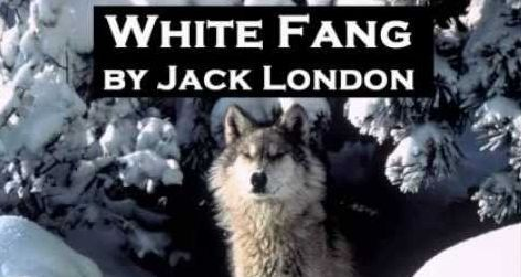 White Fang by Jack London Header Image