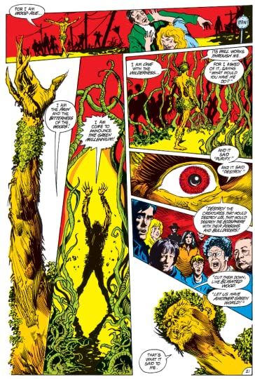 Swamp Thing Vol 1 Saga Of The Swamp Thing By Alan Moore