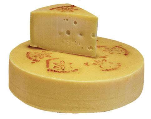 Cheese photo: Cheese cheese.jpg