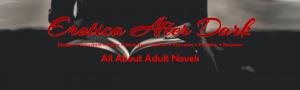 banner_pro_blogger
