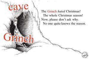 Image result for grinch book quote