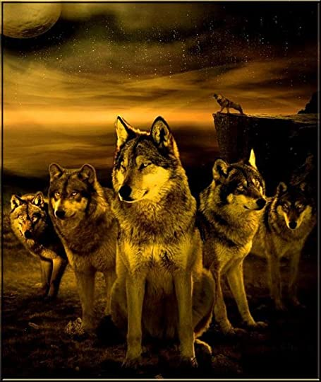 Wolf pack.:
