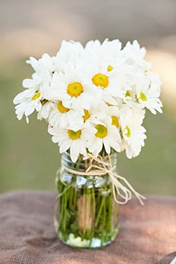 photo daisy bouquet.jpg