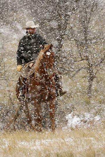 """The American Cowboy:"