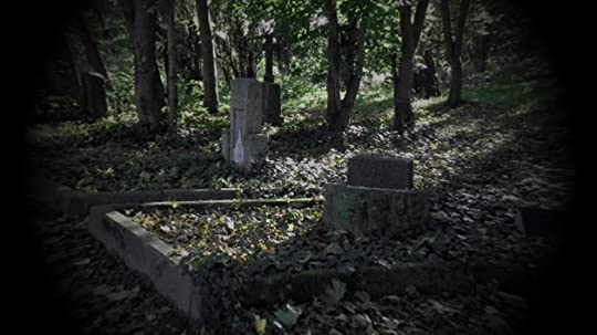 Cemetery in a forest