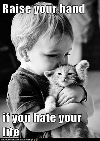 Image result for black and white cat hates kids