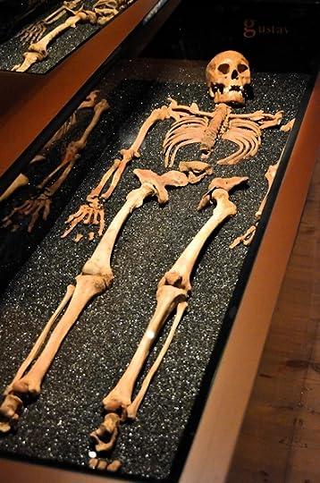 Gustav, victim of the Vasa shipwreck, Vasa Museum, Stockholm, Sweden