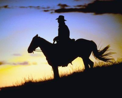 Cowboy in the sunset: