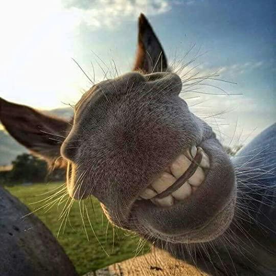 Smile!:
