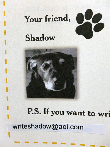 2017-06-12 - Lessons from Shadow - 0003 [flickr]