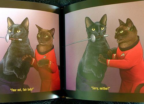 2017-06-14 - Star Trek Cats - 0005 [flickr]