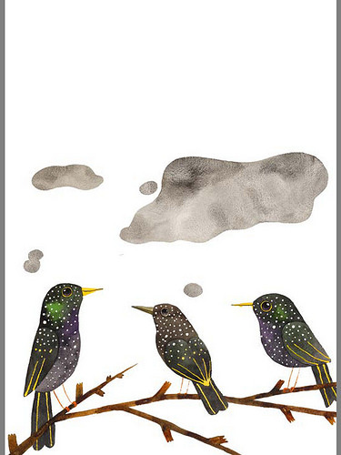 Matt Sewell starlings