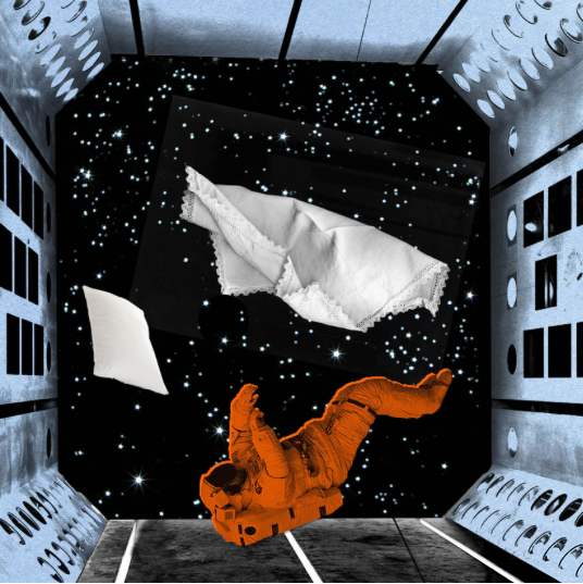 What_s It Like in Space? 4-- bookspoils
