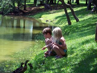 children_ducks_outdoors_water_pk_le