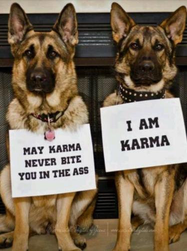 Karma 01