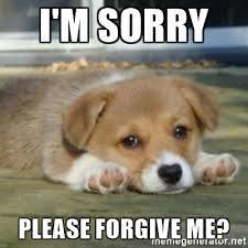 Bildergebnis für sad puppy dog face