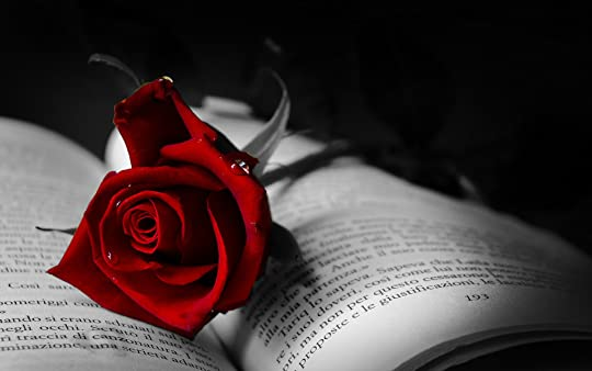 photo the-symbol-of-love-red-rose-on-a-book_2560x1600.jpg