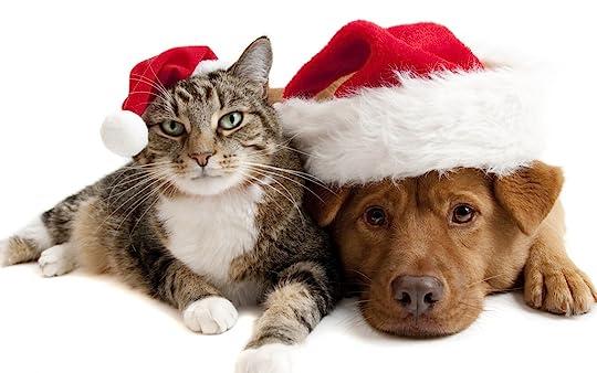 photo Christmas 4.jpg