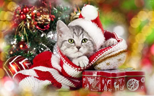 photo Christmas 5.jpg