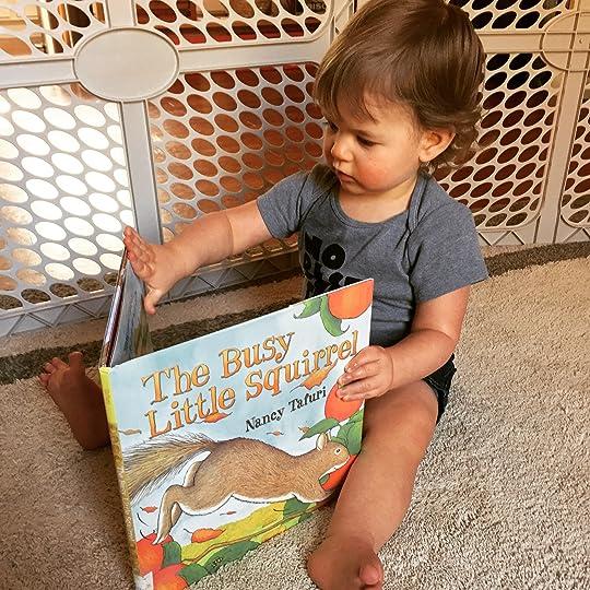 https://thebabybookwormblog.wordpress.com/2016/11/23/the-busy-little-squirrel-nancy-tafuri/