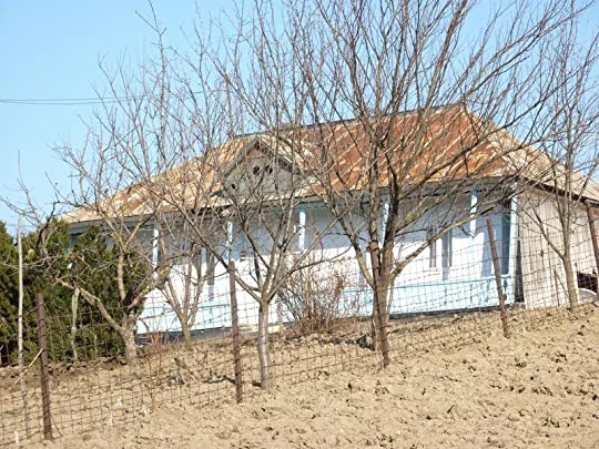 Semi-dilapidated house